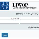UNDP Organization